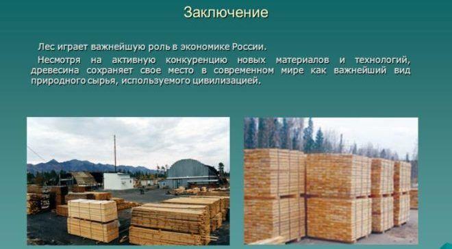 Лесопереработка в России
