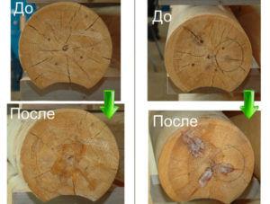 Необходимость сушки древесины