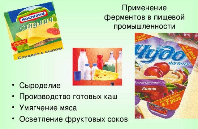 Ферменты в пищевой промышленности