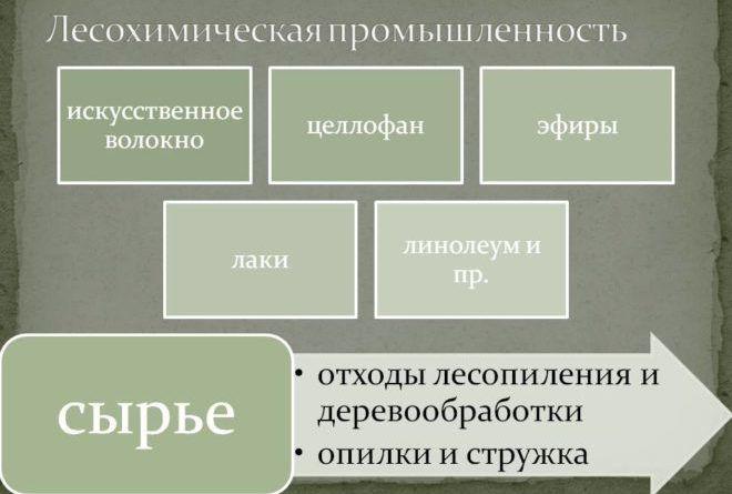 Лесохимическая промышленность