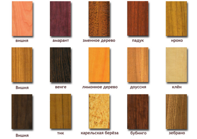 Шинная пилорама предназначена для обработки разного вида дерева