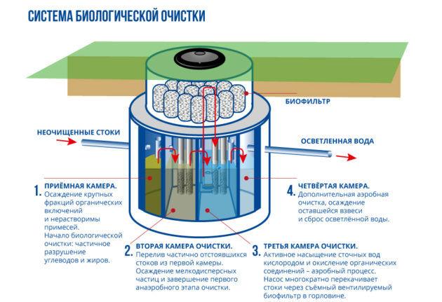 Схема биологической отчистки канализации