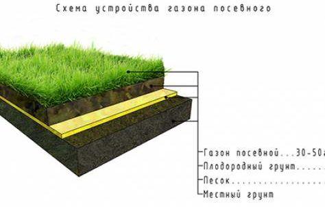 Схема устройства газона посевного
