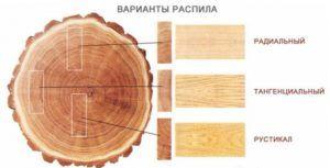 Виды раскройки леса