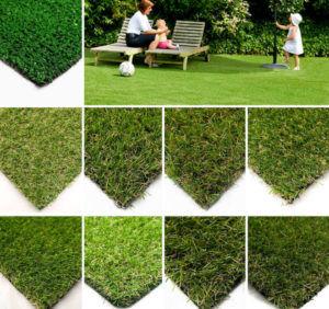 Разновидность газонов