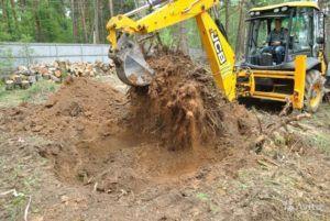 Один из важных подготовительных работ является выкорчевывание леса