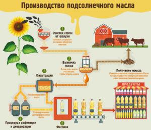 Этапы производства растительного масла
