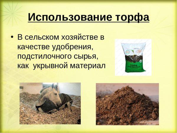 Применение торфа в сельском хозяйстве