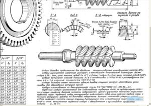 Червячные шеверы - схема и описание