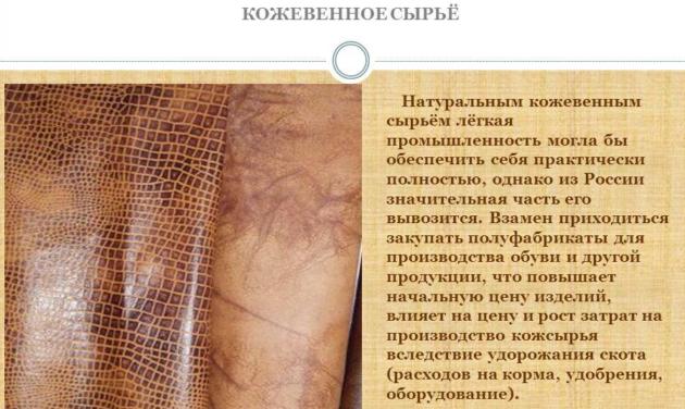 Кожевенное сырье России