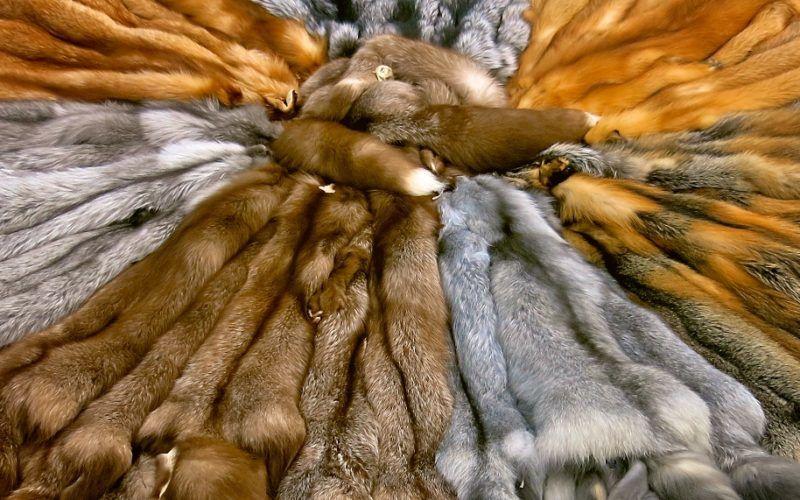 Меховая промышленность