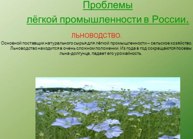 Проблемы легкой промышленности в России